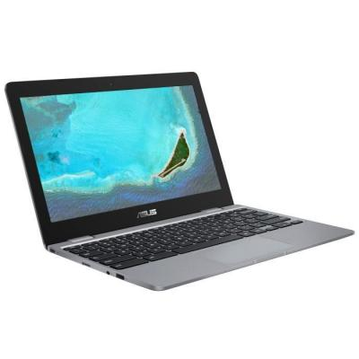 PC portable Asus Chromebook C223NA-GJ0010